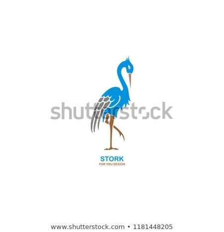 Stilize leylek örnek vektör biçim Stok fotoğraf © blaskorizov