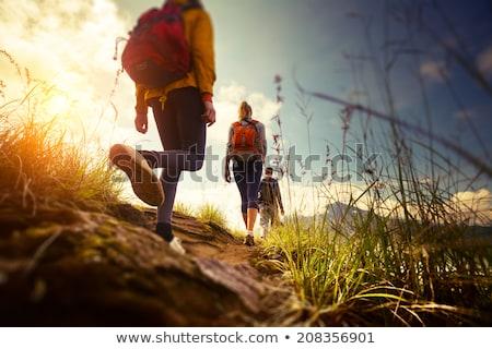 erkek · uzun · yürüyüşe · çıkan · kimse · ayakta · yüksek · mutlu - stok fotoğraf © kotenko