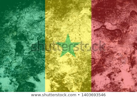 Huis vlag Senegal rij witte huizen Stockfoto © MikhailMishchenko
