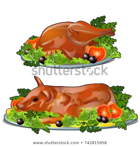 Set of fresh grilled chicken and pork with vegetables on a serving plate isolated on white backgroun stock photo © Lady-Luck