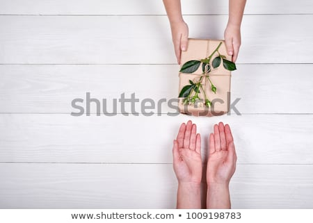 Little Boy greet Girl with Flowers and Present Stock photo © robuart