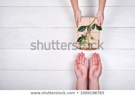 weinig · witte · bloemen · boeket · vintage · valentijnsdag · bruiloft - stockfoto © robuart