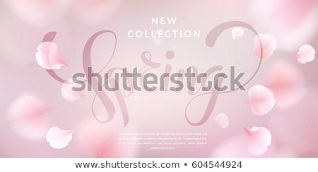 Lány szirmok édes rózsaszirmok nő virág Stock fotó © choreograph