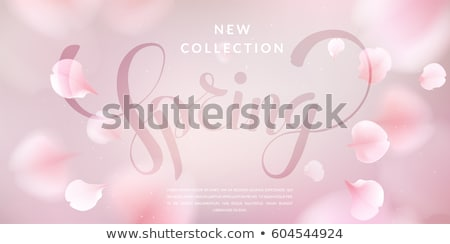 Menina pétalas doce pétalas de rosa mulher flor Foto stock © choreograph