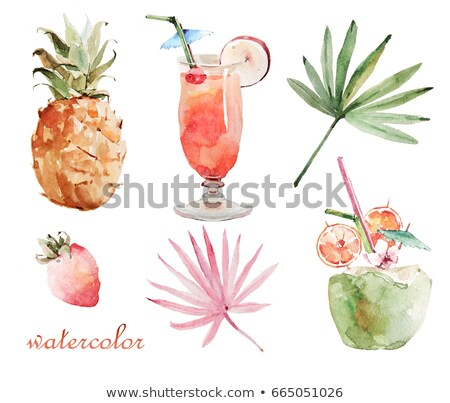 Watercolor coconut and strawberry on white background Stock photo © ConceptCafe