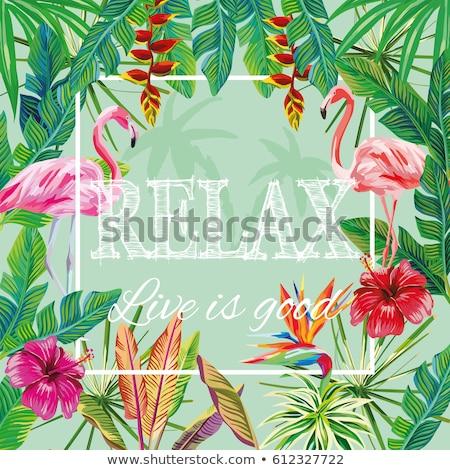 Feliz verão bandeira tropical planta flamingo Foto stock © cienpies