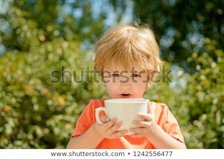 Nursery school boy_Drink party Stock photo © toyotoyo