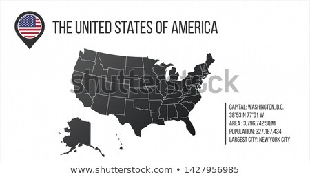 US Map with general information and flag in the map pin. Infographics design. Infographic template.  stock photo © kyryloff