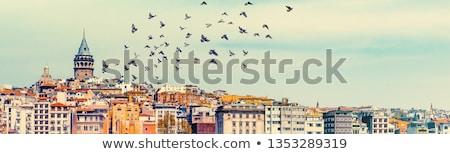 мнение Стамбуле Турция башни здании город Сток-фото © borisb17