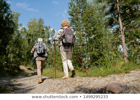 Rear view of two senior backpackers with trekking sticks moving down forest road Stock photo © pressmaster