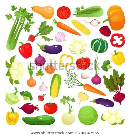 Pumpkin Cartoon Vegetable Coloring Illustration Stock photo © Krisdog