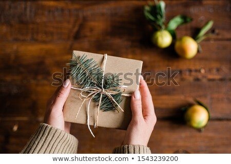 View of female hands with packed and wrapped giftbox with conifer on top Stock photo © pressmaster