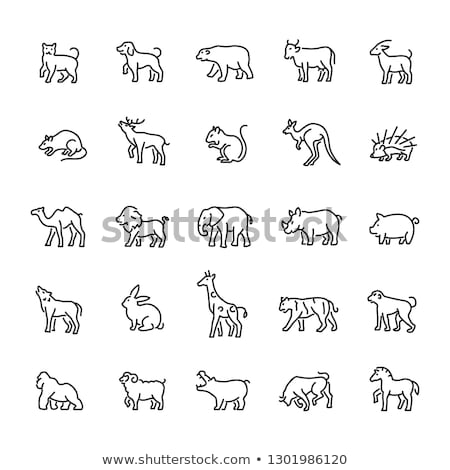 Hippo Icon Vector Outline Illustration Stock photo © pikepicture
