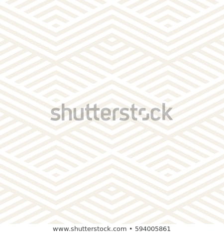 Abstrato ziguezague elegante étnico ornamento Foto stock © samolevsky