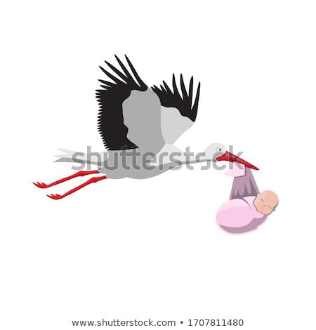 stork with the child stock photo © mayboro