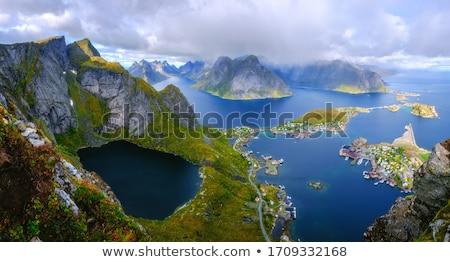 パノラマ ノルウェーの 島々 ノルウェー 冬 家 ストックフォト © dmitry_rukhlenko
