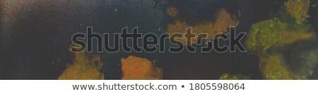 Caleidoscópio arco-íris cores isolado branco alto Foto stock © oneo