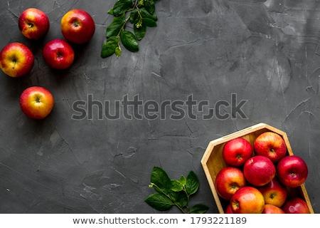 rohadt · zöld · alma · gyümölcs · levél · rajz - stock fotó © adrian_n