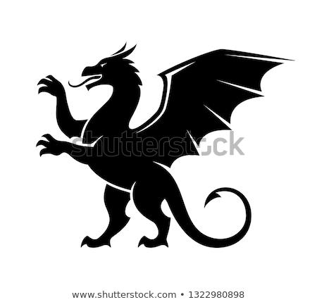 Medieval dragão vintage desenho retro poder Foto stock © sahua