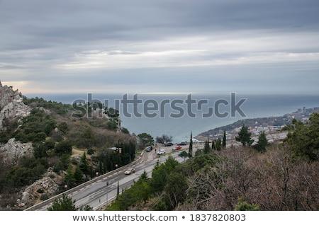 Crimea in the winter Stock photo © joyr