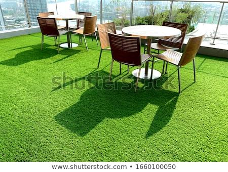 herbe · artificielle · image · construction · jardin · fond - photo stock © kitch
