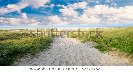 Idilli sziget poszter illusztráció messze messze Stock fotó © benchart