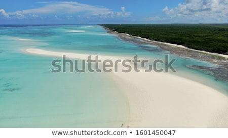 Strand tropische wit zand turkoois water blauwe hemel Stockfoto © lunamarina