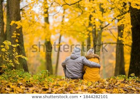 romantica · momenti · amore · momento · parco - foto d'archivio © azmo31