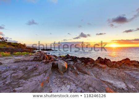 sziget · szirt · part · vonal · óceán · Hawaii - stock fotó © iriana88w