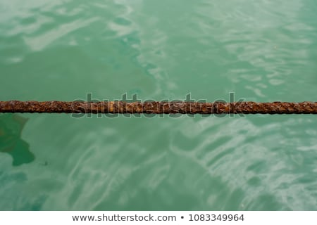 Rusty Anchor Stock photo © searagen