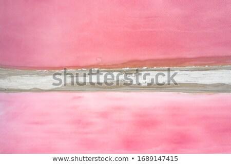 塩 湖 セントラル オーストラリア 1 ストックフォト © iTobi