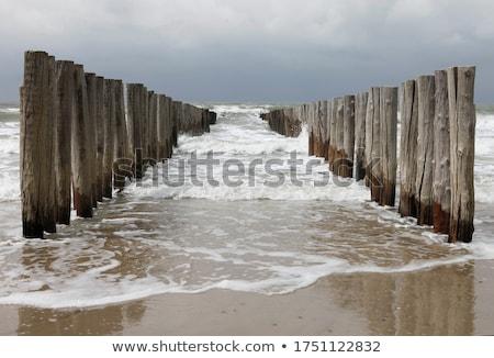 Wooden breakwater stock photo © MiroNovak
