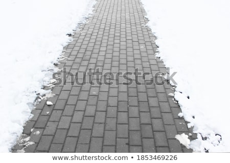 Snowshovel in a deep snow Stock photo © franky242