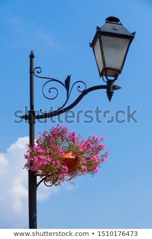 Decorative ironwork and flowerpot Stock photo © gvictoria