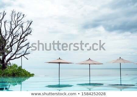 poolside deck chairs in tropical resort Stock photo © travelphotography