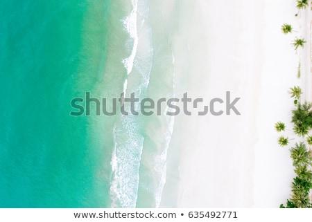 Légi lövés trópusi tengerpart magasról fotózva trópusi édenkert Stock fotó © photosoup