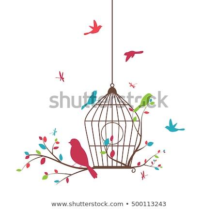 fa · madarak · madárkalitka · vektor · zöld · tavasz - stock fotó © beaubelle