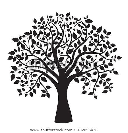 black tree silhouette vector stock photo © beaubelle