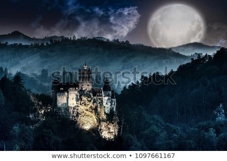 halloween · dracula · illustrazione · cute · vampiro · luna - foto d'archivio © vectomart