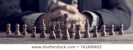 estratégico · gestão · ícone · dois · xadrez · verde - foto stock © burakowski
