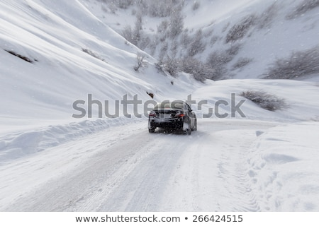 deep snow on top of white car in drive stock photo © backyardproductions
