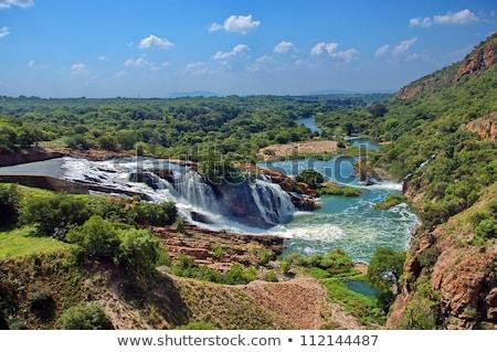 водопада · крокодила · реке · ЮАР · облака · деревья - Сток-фото © intsys