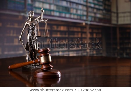 A law book with a gavel - Constitution Stock photo © Zerbor