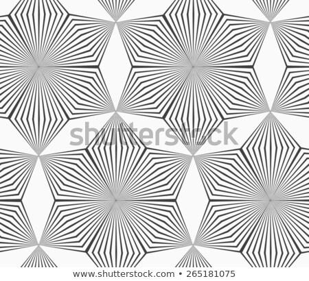 Monochrome striped six pedal rhombus flowers Stock photo © Zebra-Finch