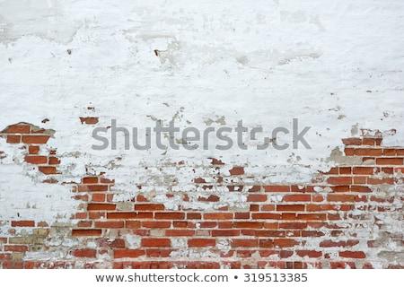 homlokzat · szigetelés · rétegek · fix · háló · fedett - stock fotó © pixpack