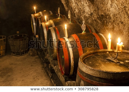 wine cellar in velka trna tokaj wine region slovakia stock photo © phbcz
