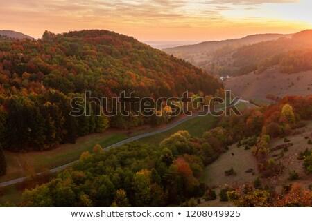 bomen · zonsondergang · Duitsland · hemel · natuur · veld - stockfoto © w20er