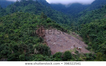 Vietnam Landscape Mountain Bare Hill Deforestation Foto stock © xuanhuongho