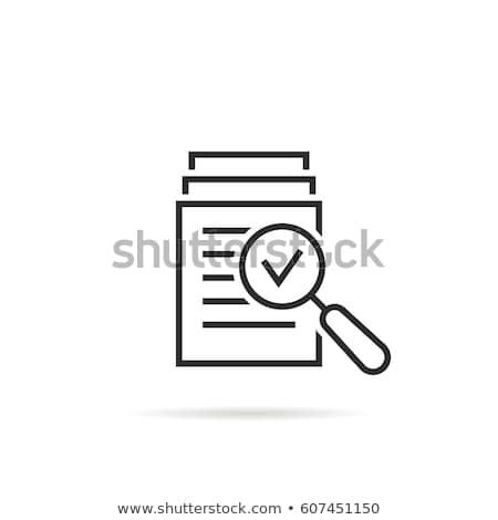 Könyvvizsgálat ikon üzlet terv izolált illusztráció Stock fotó © WaD