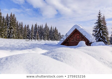 Winter holiday house in slovenia alps Stock photo © Fesus